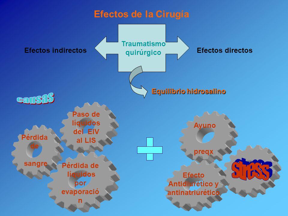 Paso de líquidos del EIV al LIS líquidos por evaporación