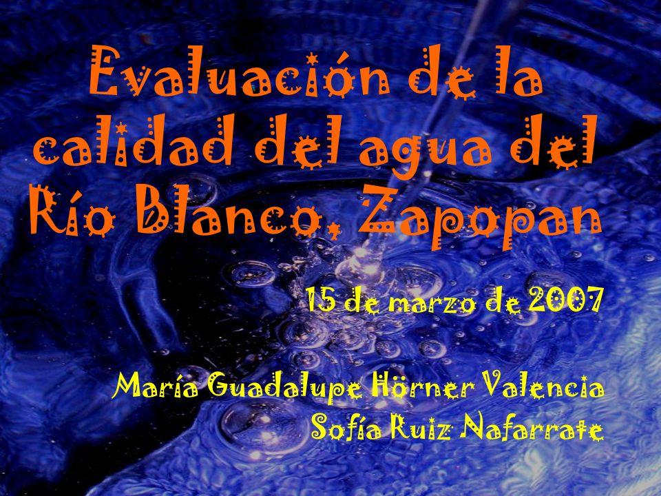 Evaluación de la calidad del agua del Río Blanco, Zapopan