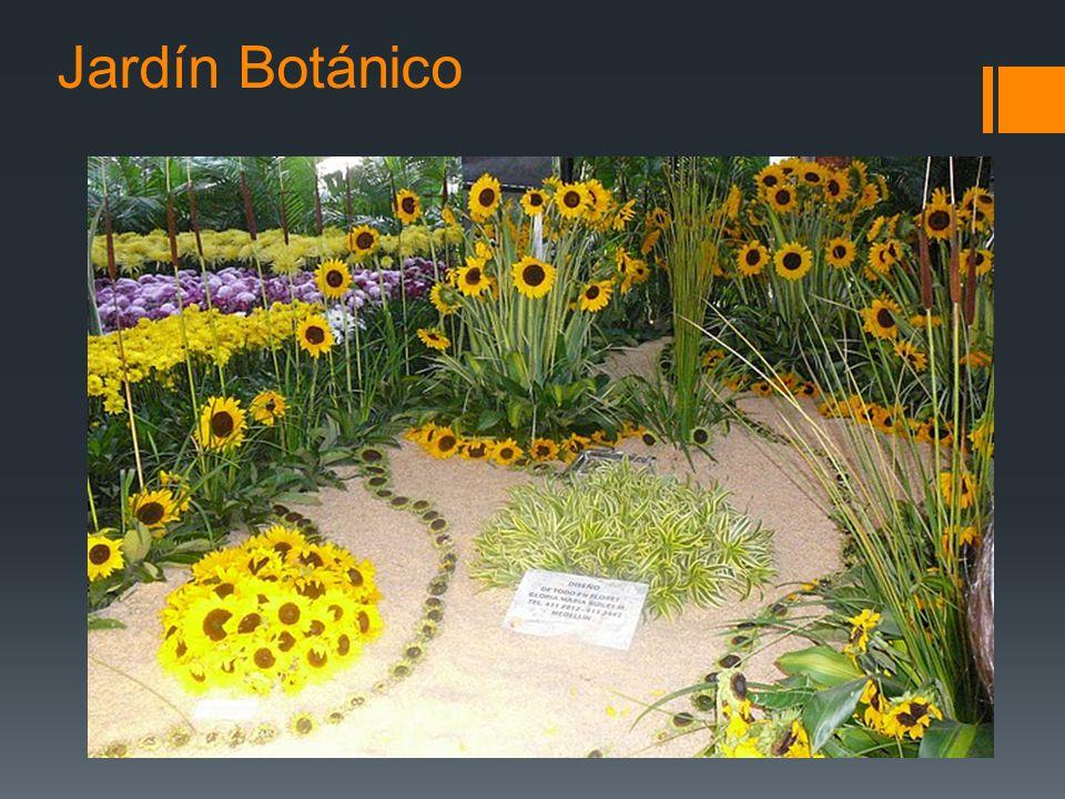 Regi n andina el centro de colombia ppt video online for Programacion jardin botanico