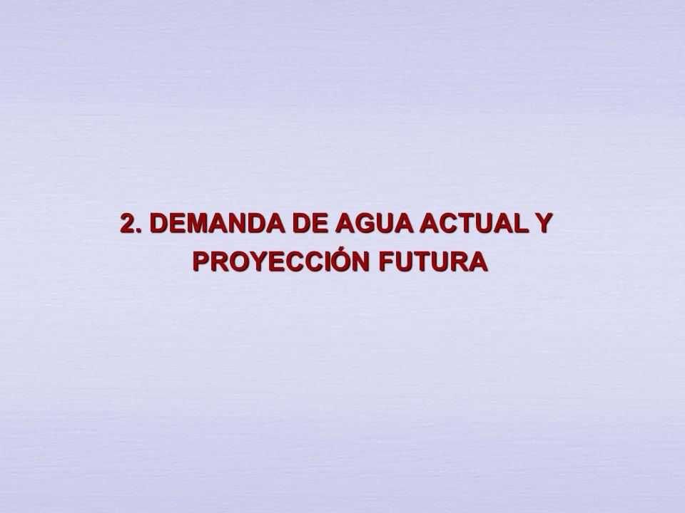 2. DEMANDA DE AGUA ACTUAL Y