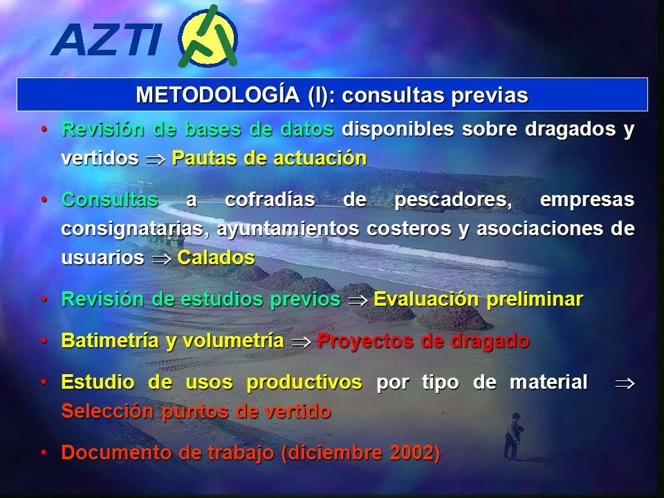 METODOLOGÍA (I): consultas previas