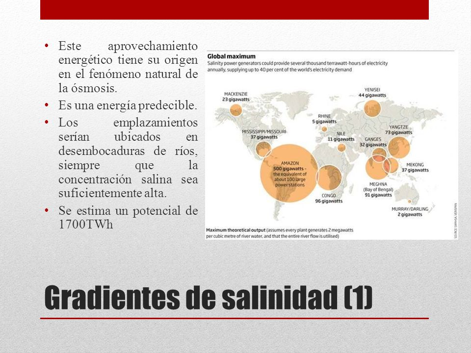 Gradientes de salinidad (1)