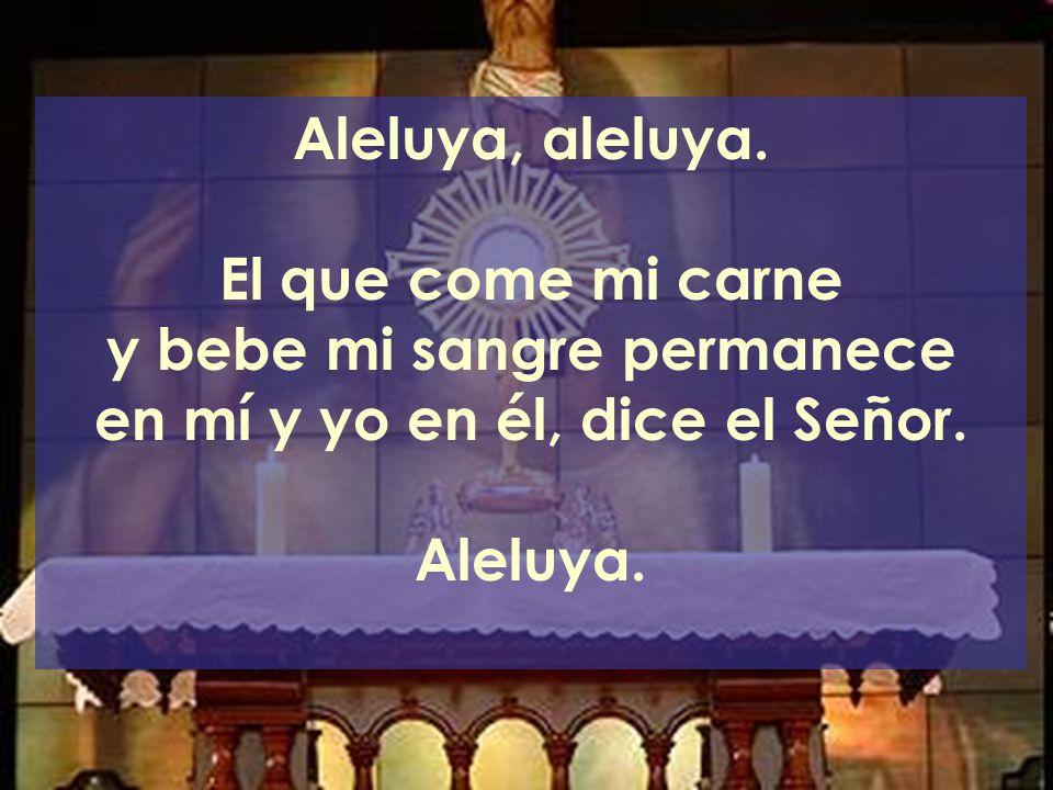 y bebe mi sangre permanece en mí y yo en él, dice el Señor.