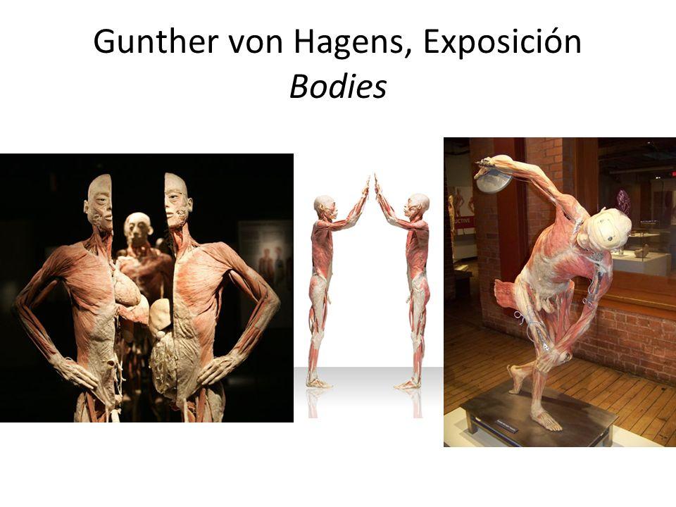 Gunther von Hagens, Exposición Bodies