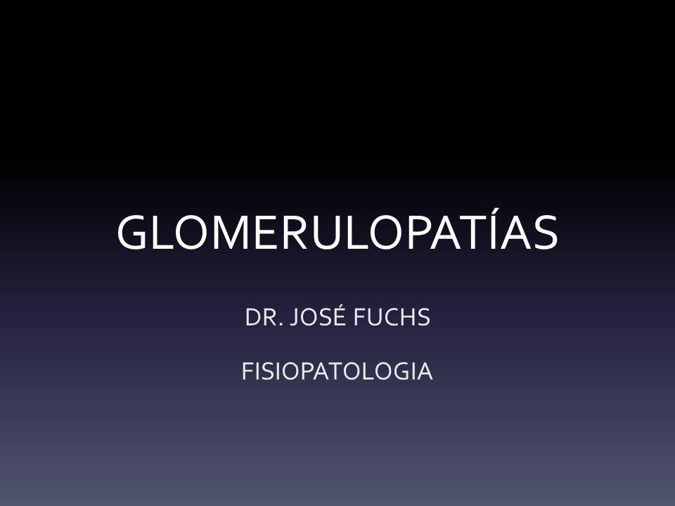DR. JOSÉ FUCHS FISIOPATOLOGIA