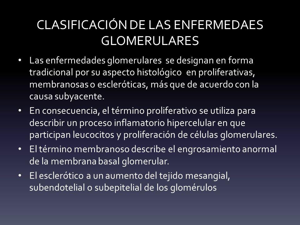 CLASIFICACIÓN DE LAS ENFERMEDAES GLOMERULARES