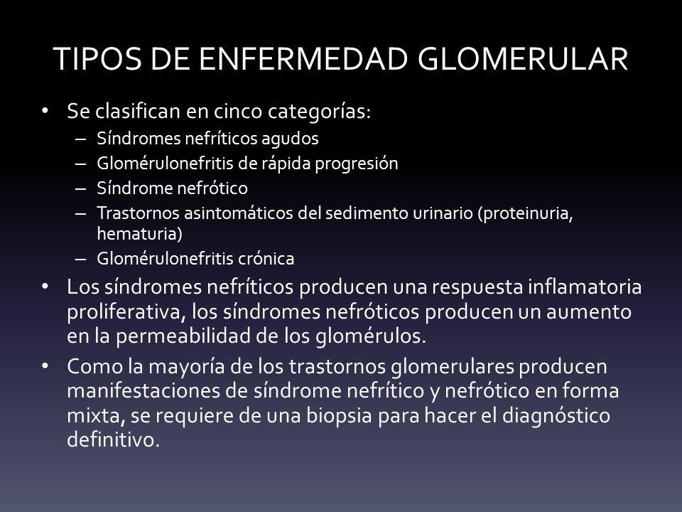 TIPOS DE ENFERMEDAD GLOMERULAR