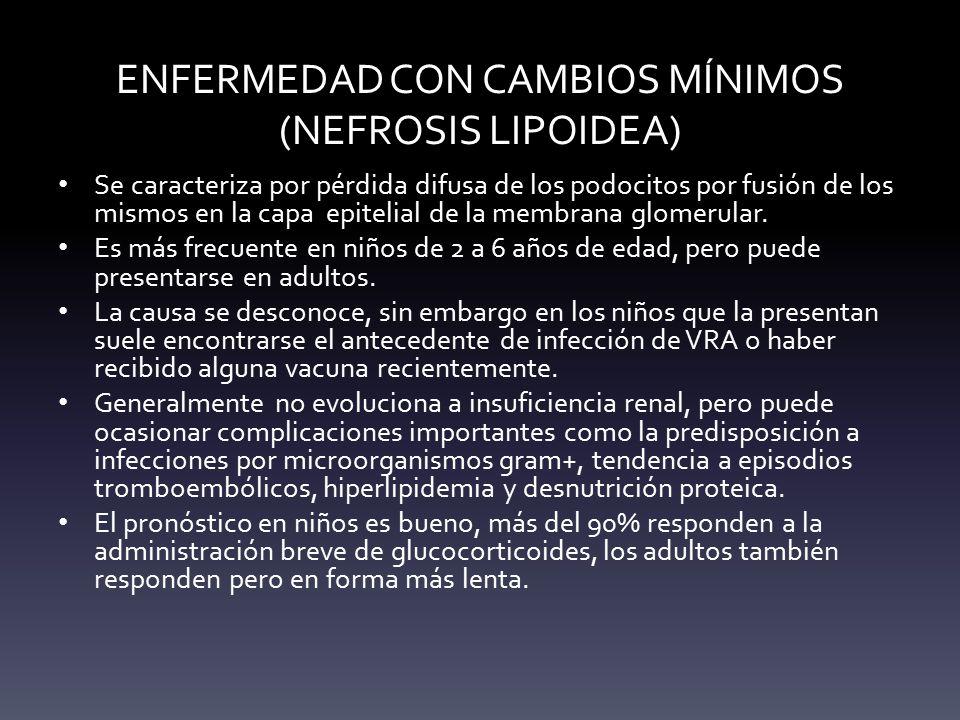 ENFERMEDAD CON CAMBIOS MÍNIMOS (NEFROSIS LIPOIDEA)