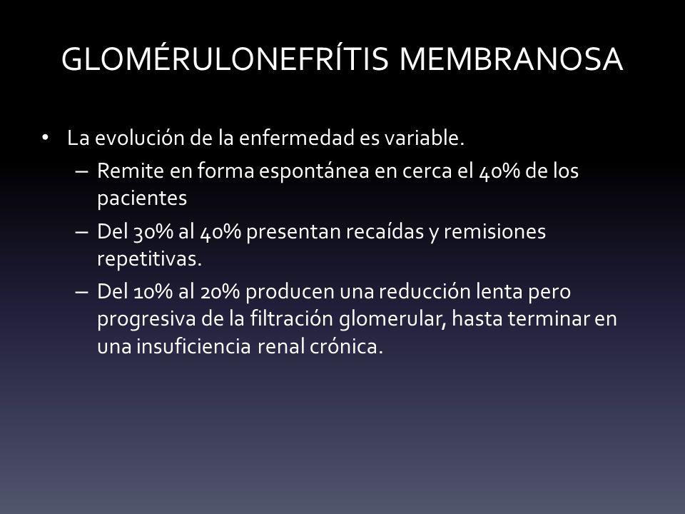GLOMÉRULONEFRÍTIS MEMBRANOSA