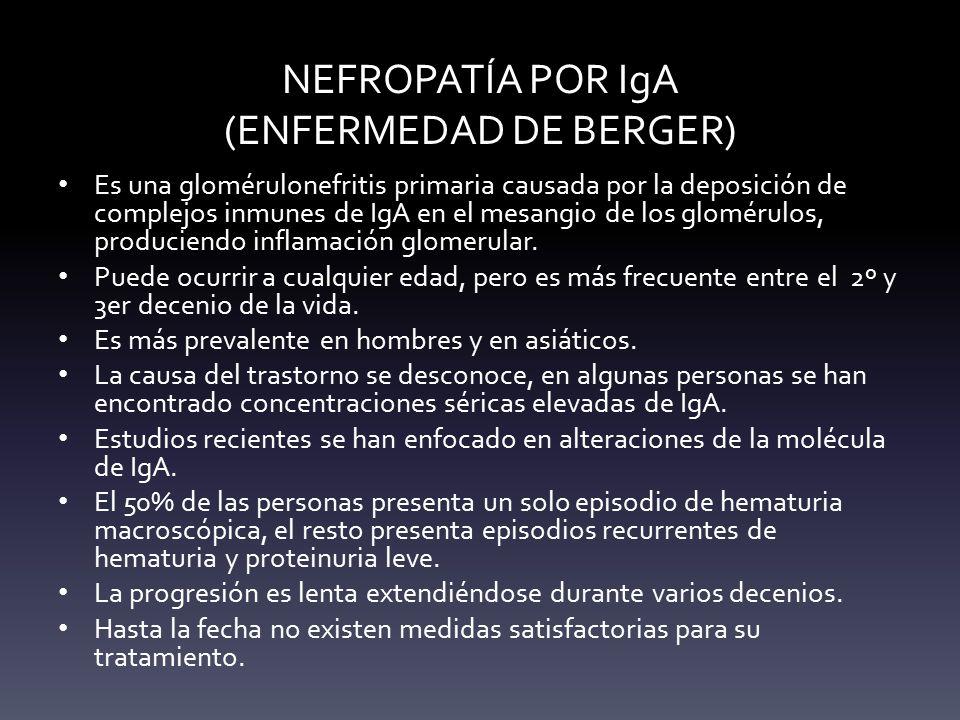 NEFROPATÍA POR IgA (ENFERMEDAD DE BERGER)