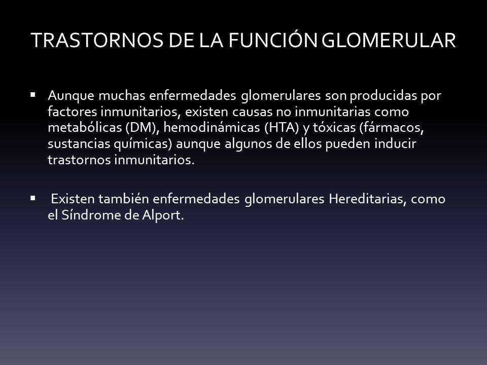 TRASTORNOS DE LA FUNCIÓN GLOMERULAR
