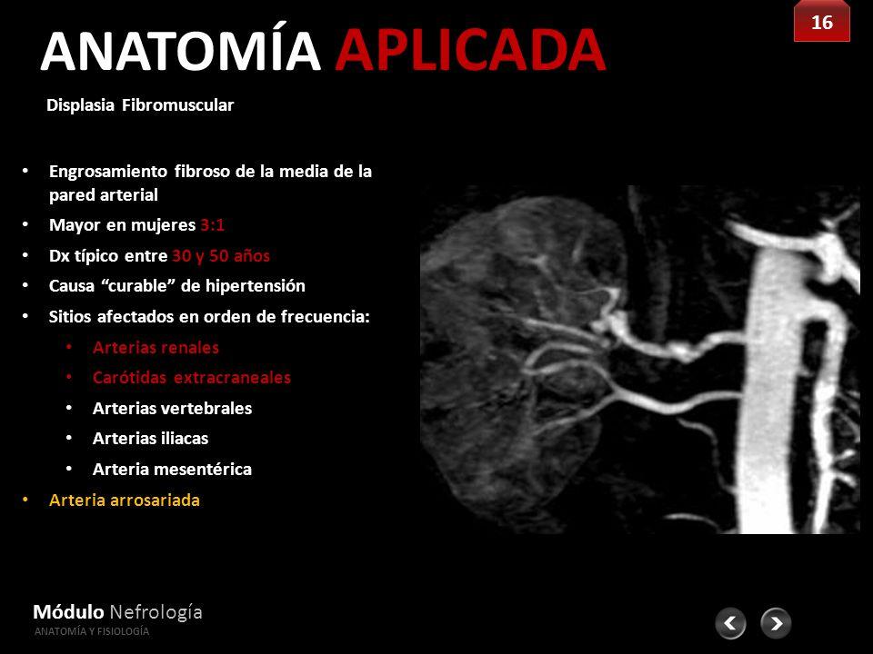 Vistoso Become Anatomía Y Fisiología Capítulo 1 Modelo - Anatomía y ...