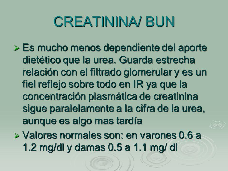 INSUFICIENCIA RENAL AGUDA Y CRONICA - ppt video online