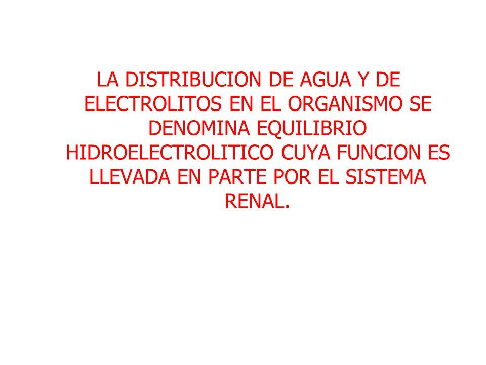 LA DISTRIBUCION DE AGUA Y DE ELECTROLITOS EN EL ORGANISMO SE DENOMINA EQUILIBRIO HIDROELECTROLITICO CUYA FUNCION ES LLEVADA EN PARTE POR EL SISTEMA RENAL.
