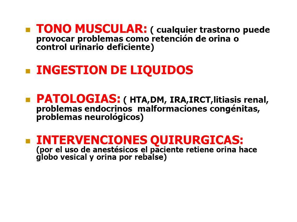 TONO MUSCULAR: ( cualquier trastorno puede provocar problemas como retención de orina o control urinario deficiente)