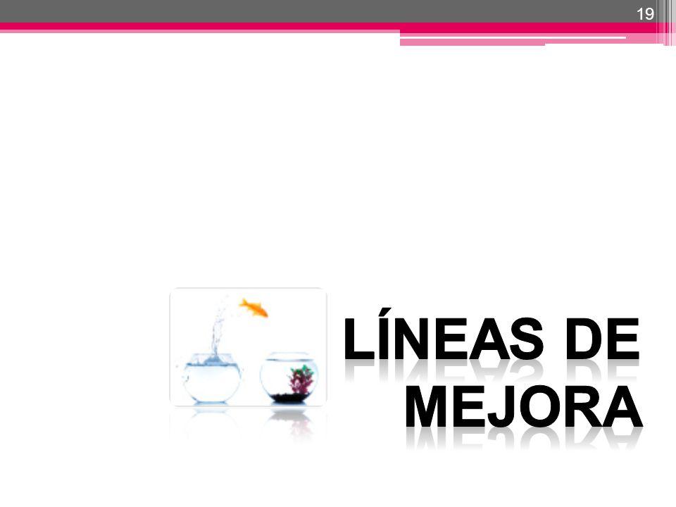 19 LÍNEAS DE MEJORA 19