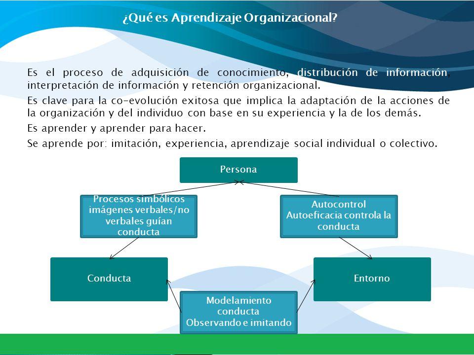 ¿Qué es Aprendizaje Organizacional