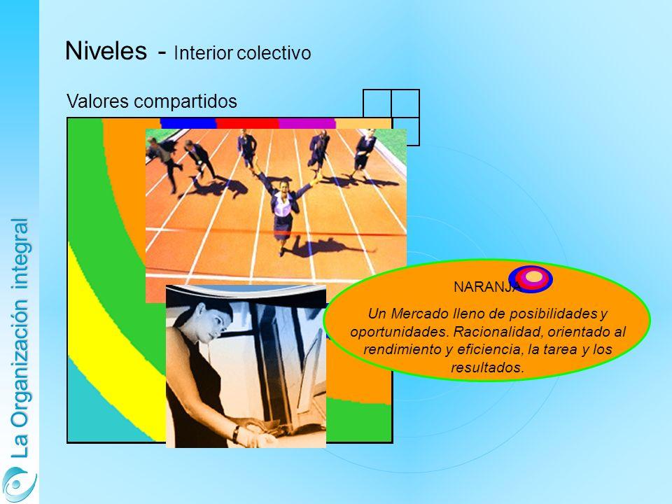 Niveles - Interior colectivo