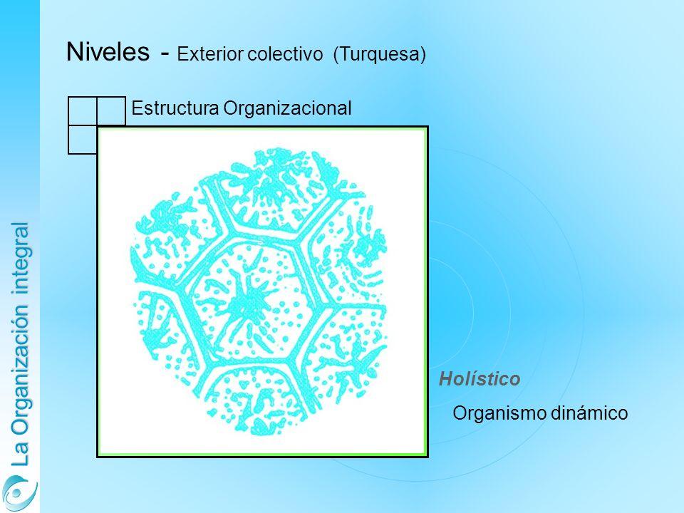 Niveles - Exterior colectivo (Turquesa)