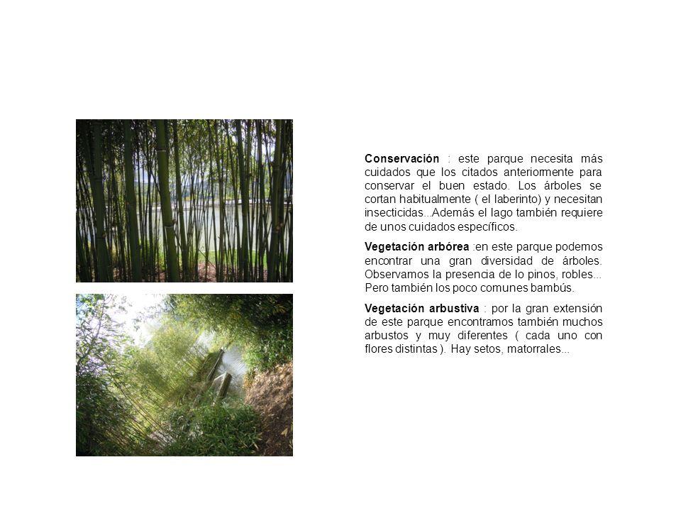 Conservación : este parque necesita más cuidados que los citados anteriormente para conservar el buen estado. Los árboles se cortan habitualmente ( el laberinto) y necesitan insecticidas...Además el lago también requiere de unos cuidados específicos.