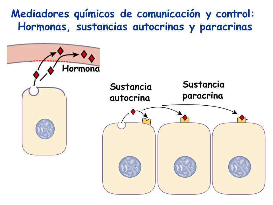 Mediadores químicos de comunicación y control: