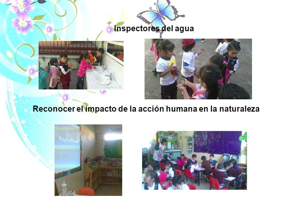 Reconocer el impacto de la acción humana en la naturaleza