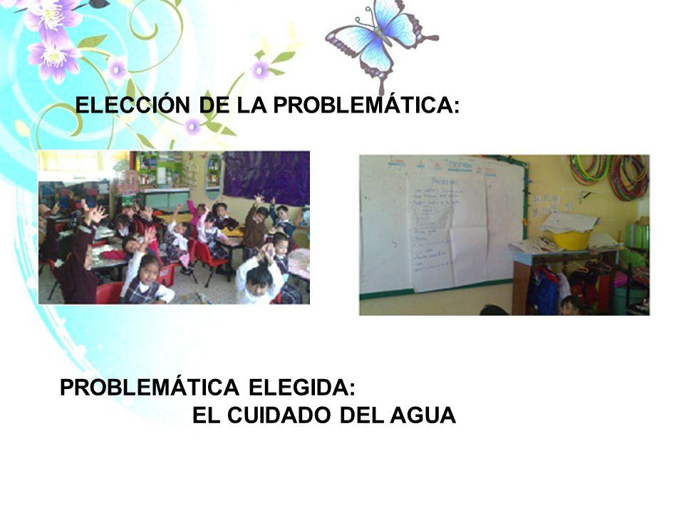 ELECCIÓN DE LA PROBLEMÁTICA: