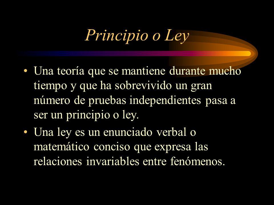 Principio o Ley