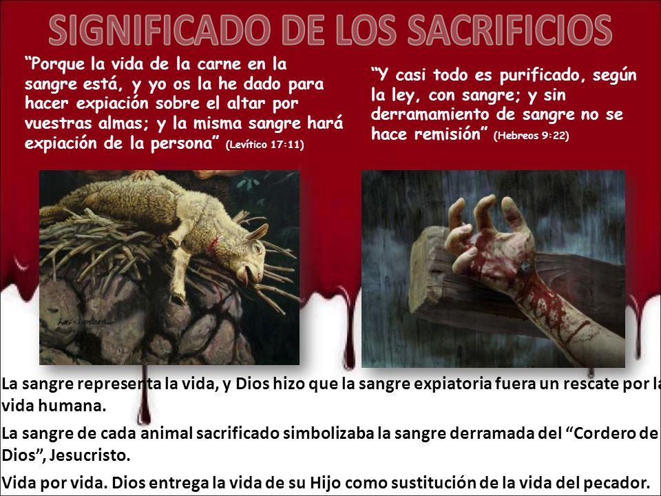 SIGNIFICADO DE LOS SACRIFICIOS