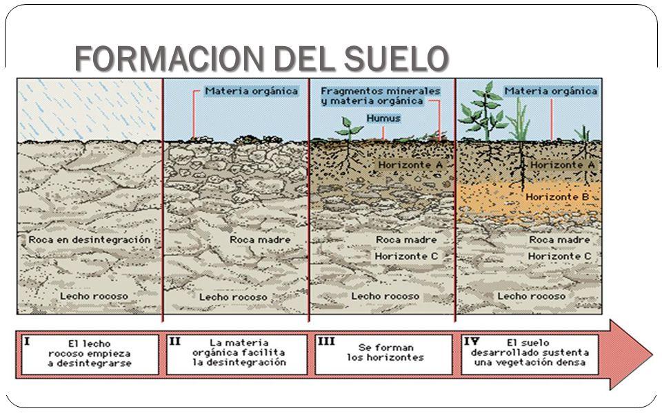 los suelos un recurso renovable ppt descargar