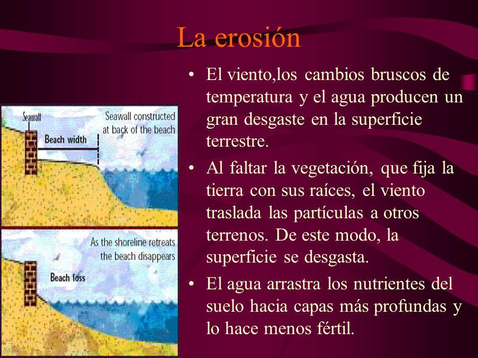 La erosiónEl viento,los cambios bruscos de temperatura y el agua producen un gran desgaste en la superficie terrestre.