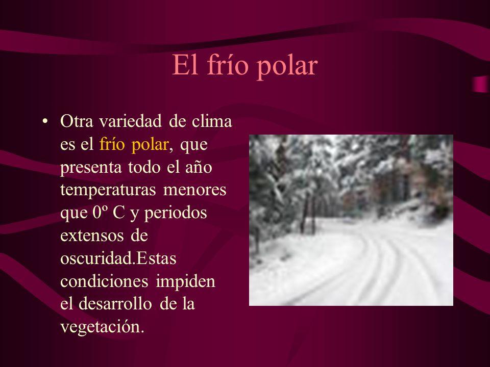 El frío polar