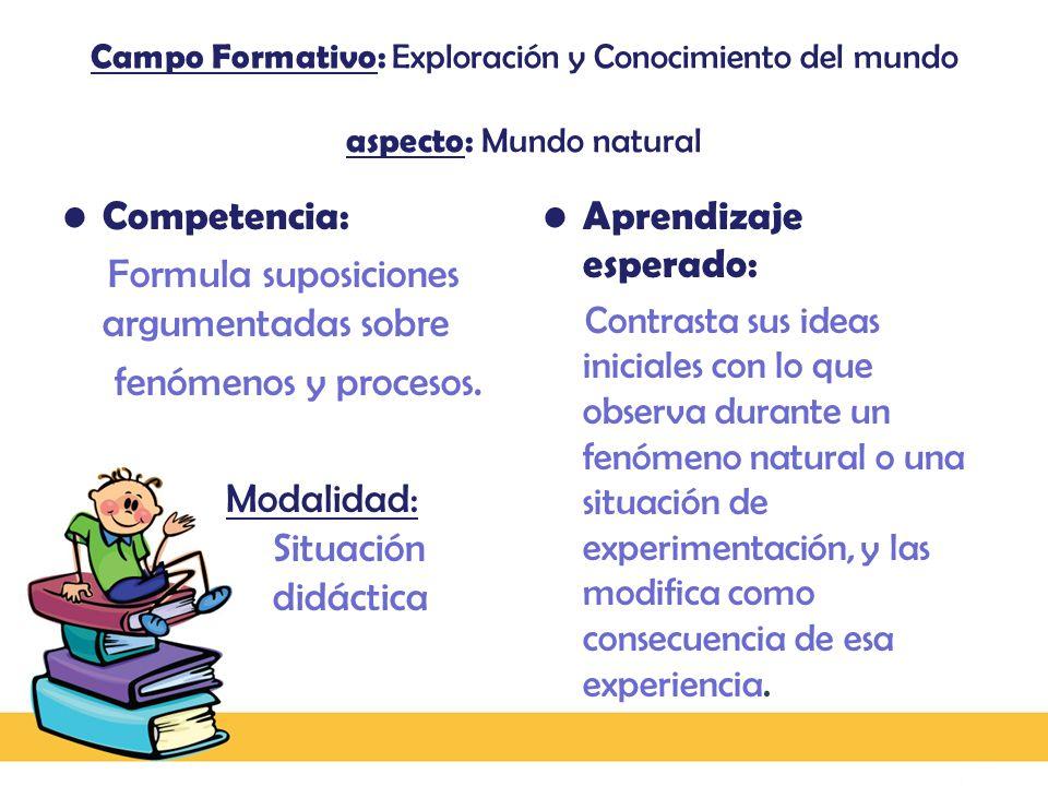 Formula suposiciones argumentadas sobre fenómenos y procesos.