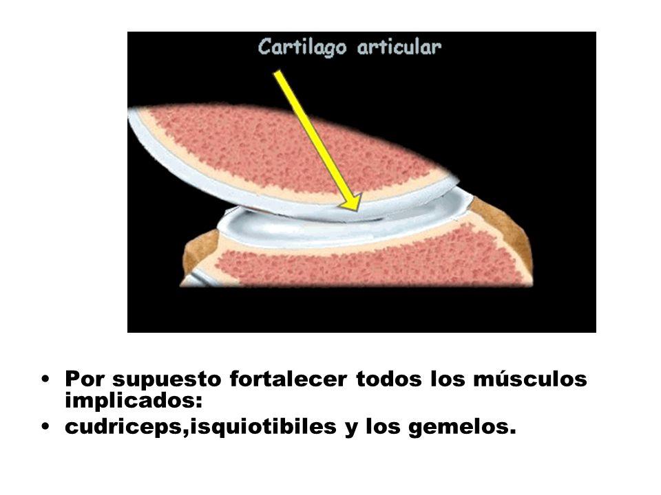 Por supuesto fortalecer todos los músculos implicados: