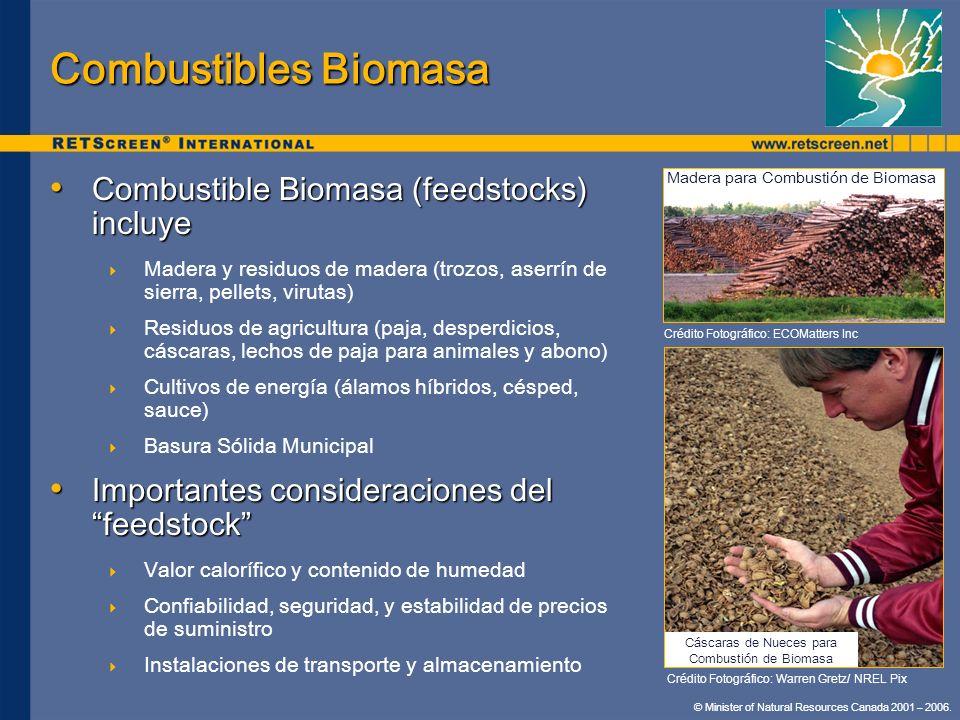 Combustibles Biomasa Combustible Biomasa (feedstocks) incluye