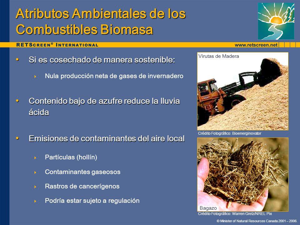 Atributos Ambientales de los Combustibles Biomasa