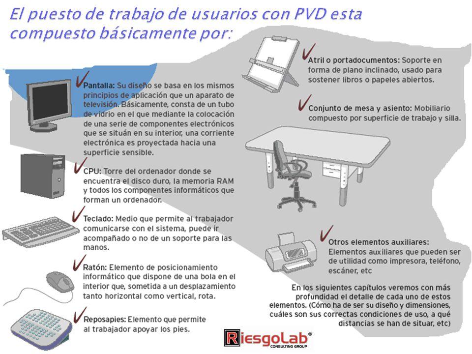 El puesto de trabajo de usuarios con PVD esta compuesto básicamente por: