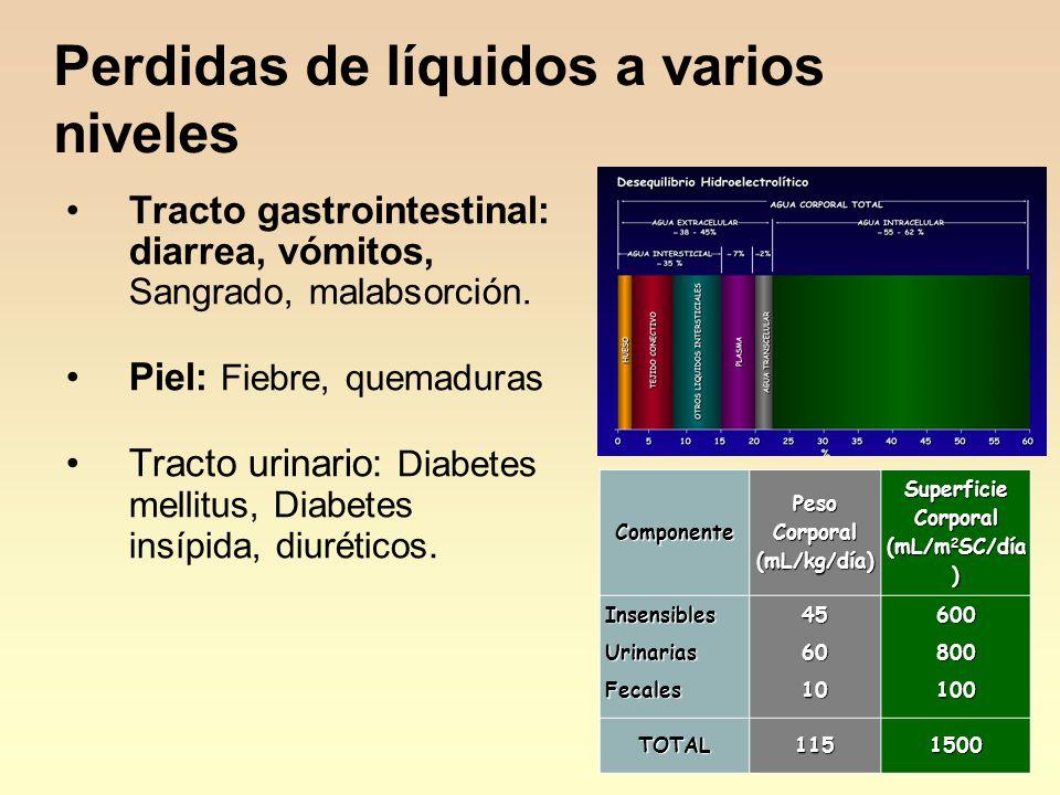 Perdidas de líquidos a varios niveles