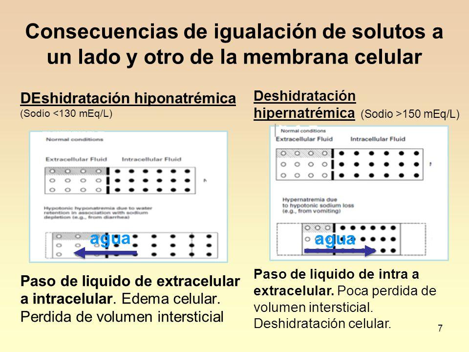 Consecuencias de igualación de solutos a un lado y otro de la membrana celular