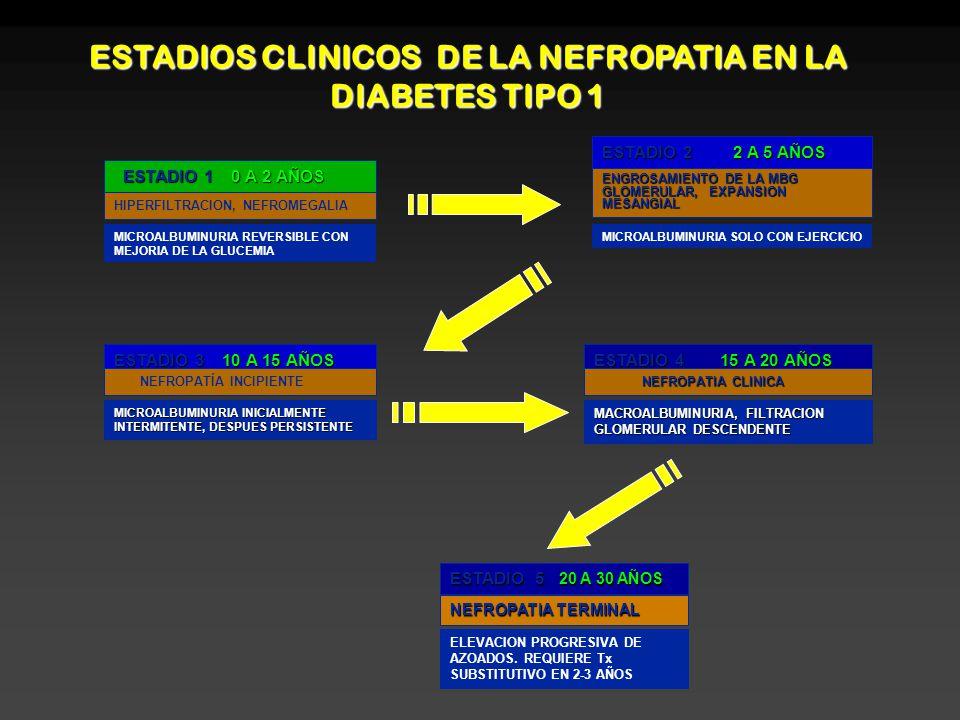 Mbg diabetes