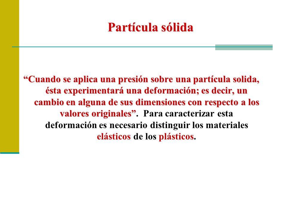 Partícula sólida