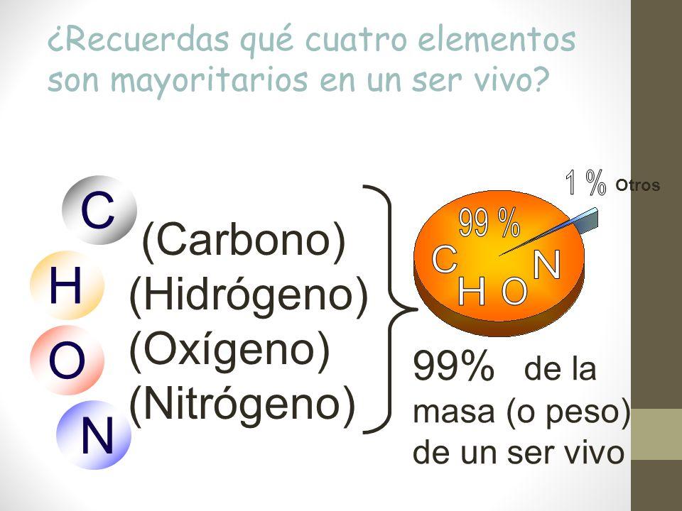 Resultado de imagen de El CHON, las moléculas para la vida
