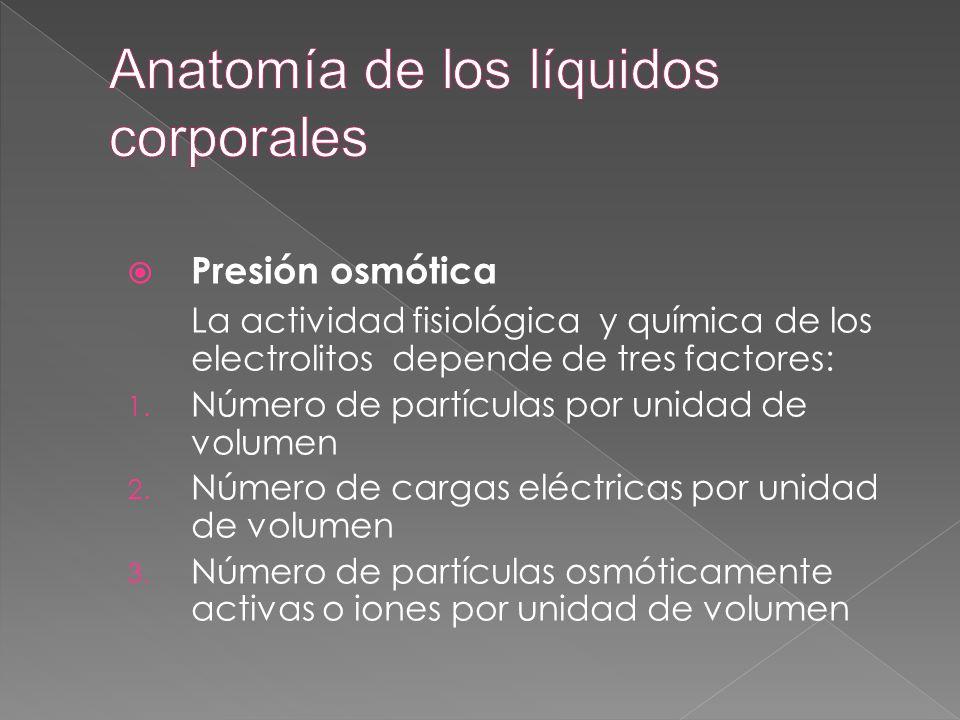 Anatomía de los líquidos corporales