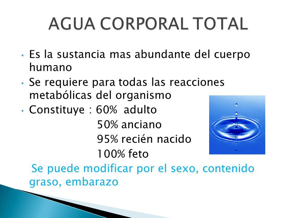 AGUA CORPORAL TOTAL Es la sustancia mas abundante del cuerpo humano