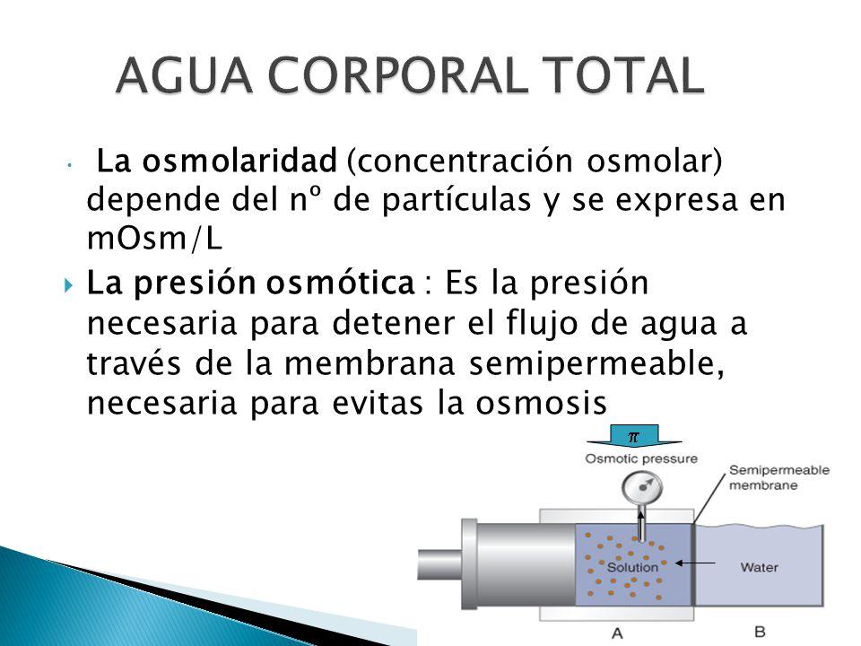 AGUA CORPORAL TOTAL La osmolaridad (concentración osmolar) depende del nº de partículas y se expresa en mOsm/L.