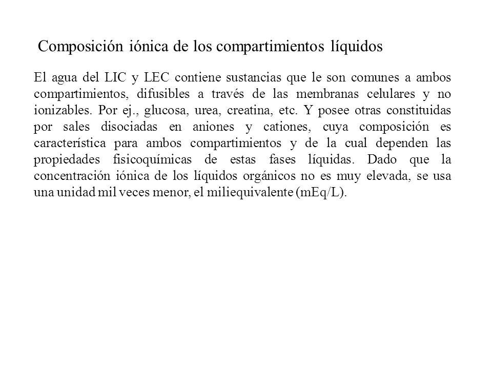 Composición iónica de los compartimientos líquidos