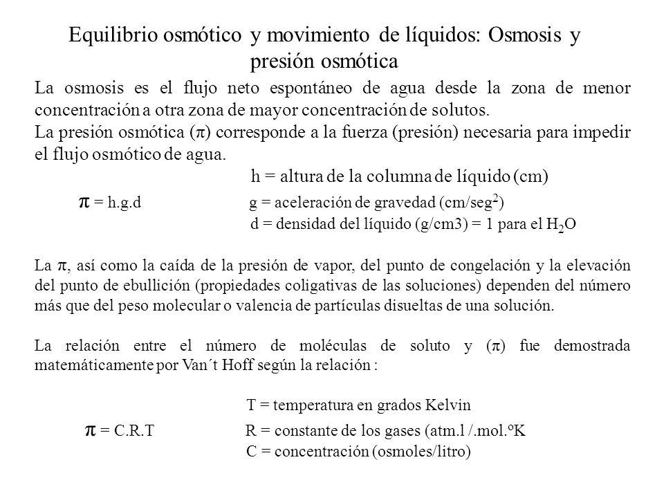 π = h.g.d g = aceleración de gravedad (cm/seg2)