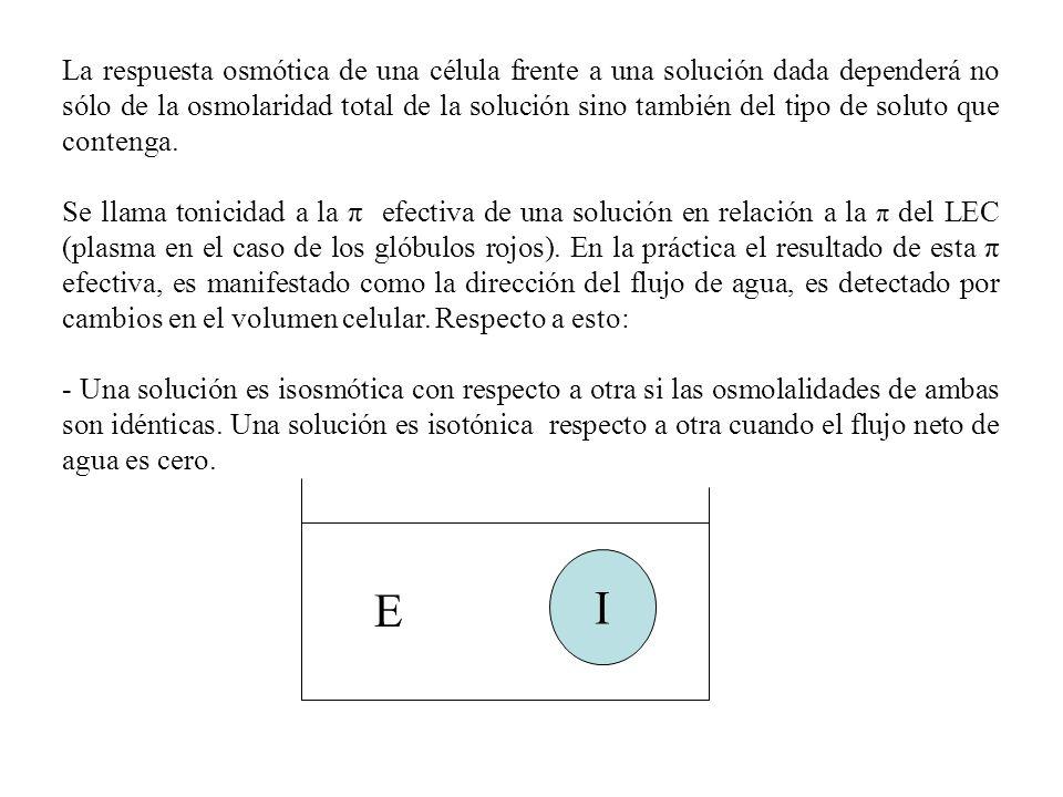 La respuesta osmótica de una célula frente a una solución dada dependerá no sólo de la osmolaridad total de la solución sino también del tipo de soluto que contenga.