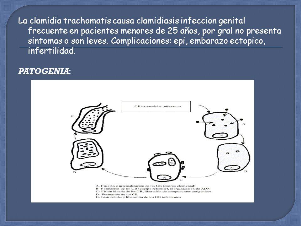 La clamidia trachomatis causa clamidiasis infeccion genital frecuente en pacientes menores de 25 años, por gral no presenta sintomas o son leves.