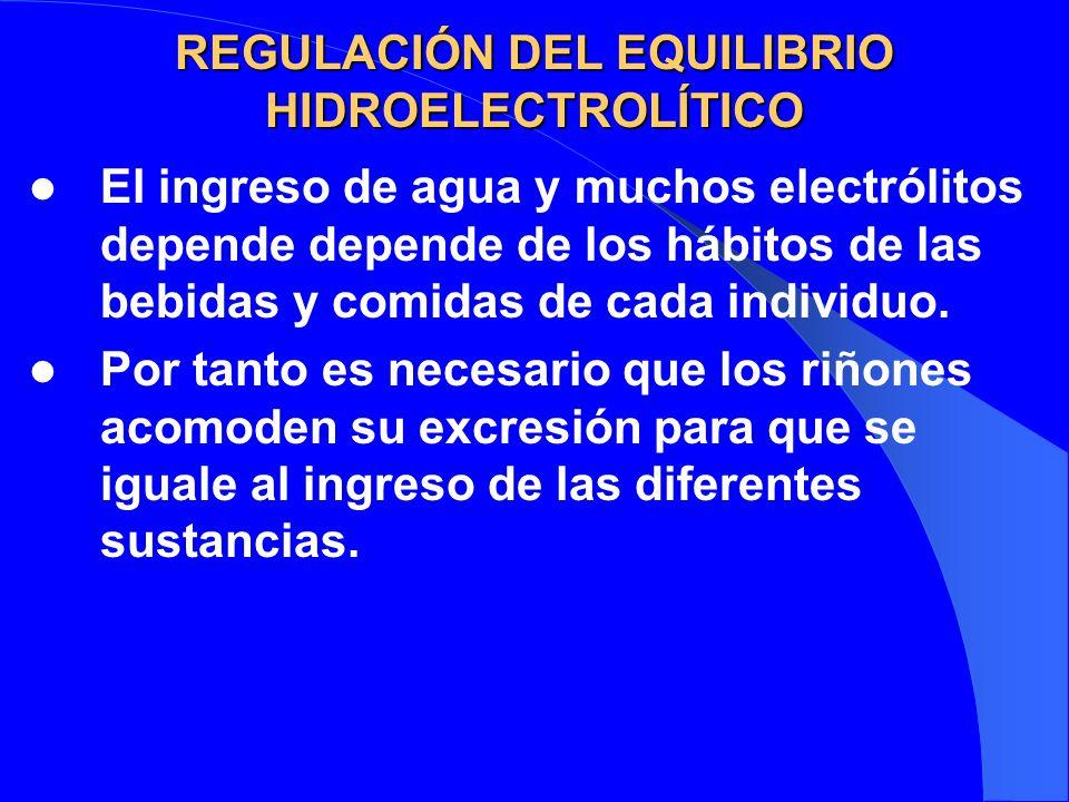 REGULACIÓN DEL EQUILIBRIO HIDROELECTROLÍTICO